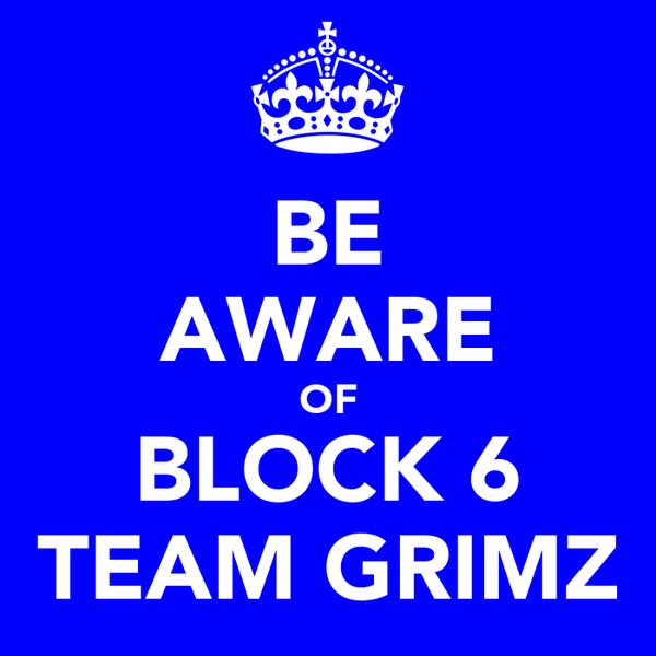 BE AWARE OF BLOCK 6 TEAM GRIMZ