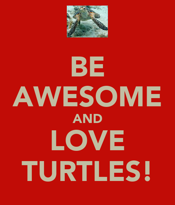 BE AWESOME AND LOVE TURTLES!