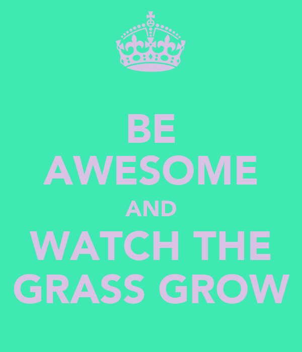BE AWESOME AND WATCH THE GRASS GROW