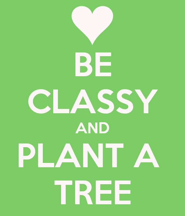 BE CLASSY AND PLANT A  TREE