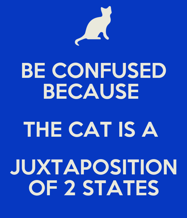 BE CONFUSED BECAUSE  THE CAT IS A  JUXTAPOSITION OF 2 STATES