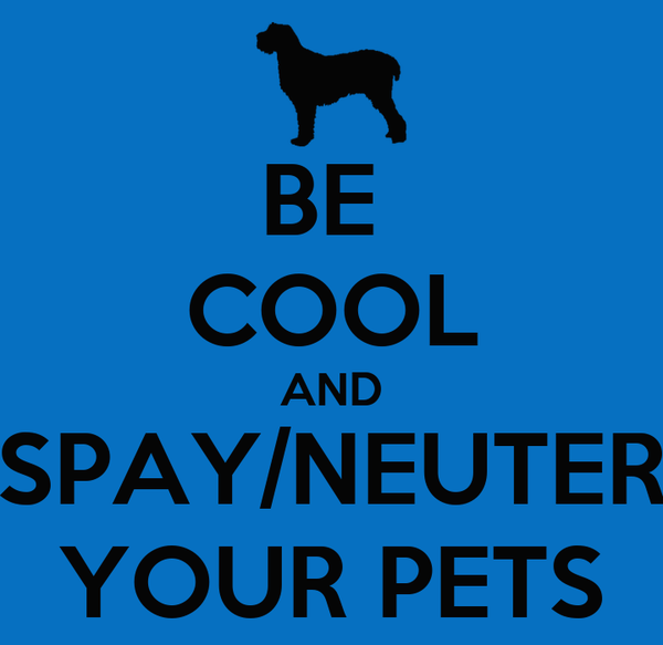 BE  COOL AND SPAY/NEUTER YOUR PETS
