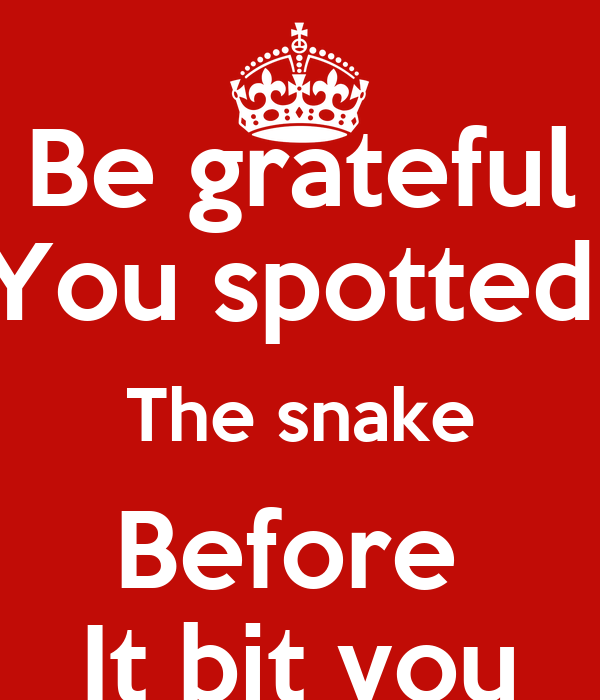 Be grateful You spotted  The snake Before  It bit you