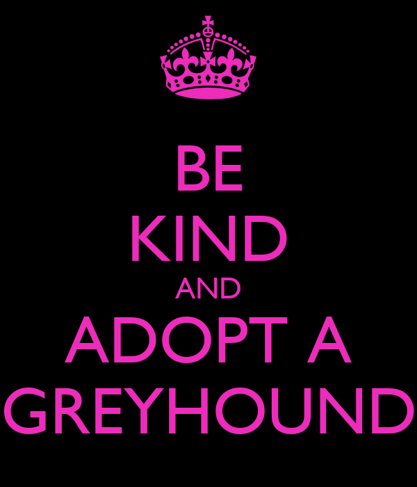 BE KIND AND ADOPT A GREYHOUND