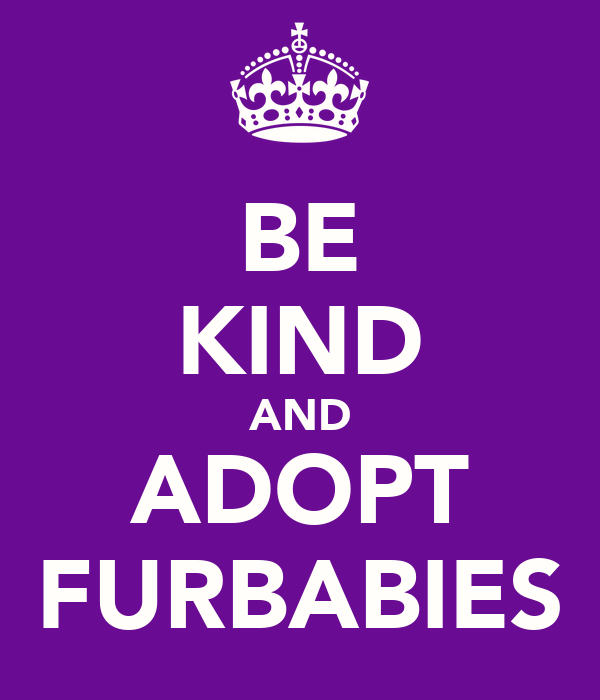 BE KIND AND ADOPT FURBABIES