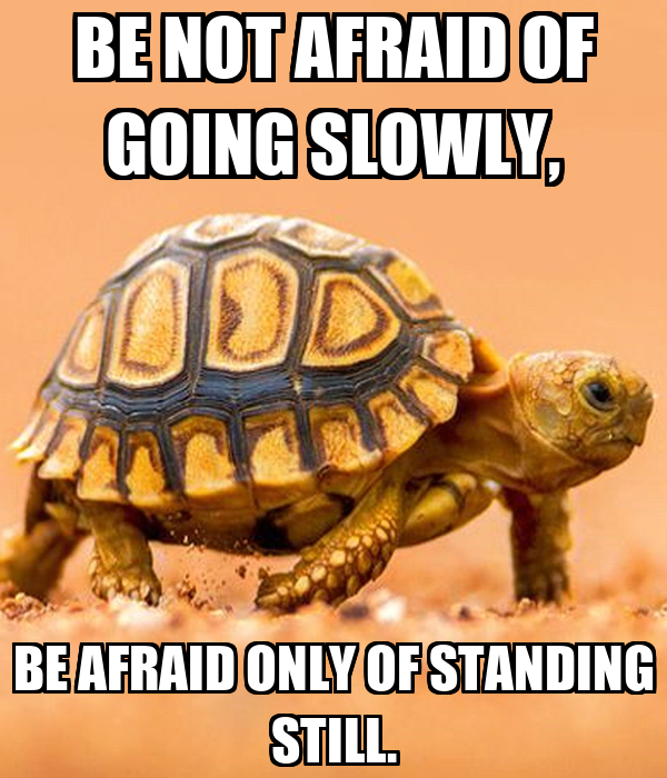 BE NOT AFRAID OF GOING SLOWLY, BE AFRAID ONLY OF STANDING STILL.