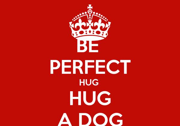 BE  PERFECT HUG  HUG A DOG