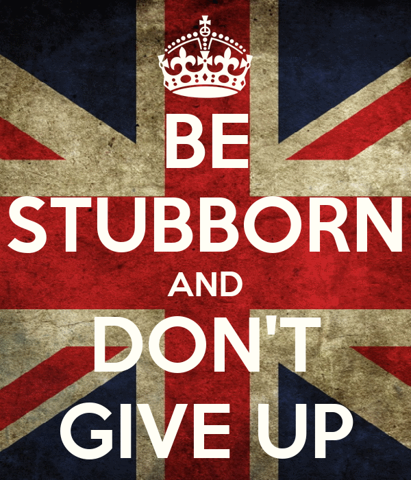 BE STUBBORN AND DON'T GIVE UP