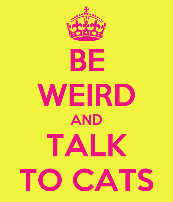 BE WEIRD AND TALK TO CATS