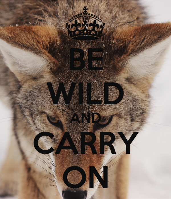 BE WILD AND CARRY ON