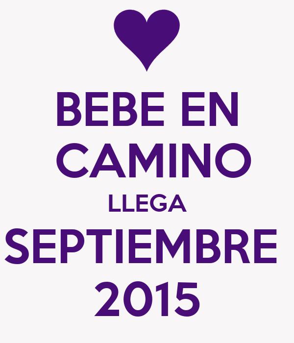 BEBE EN  CAMINO LLEGA SEPTIEMBRE  2015