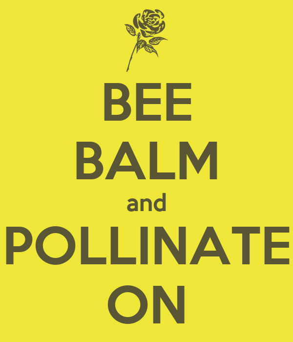 BEE BALM and POLLINATE ON