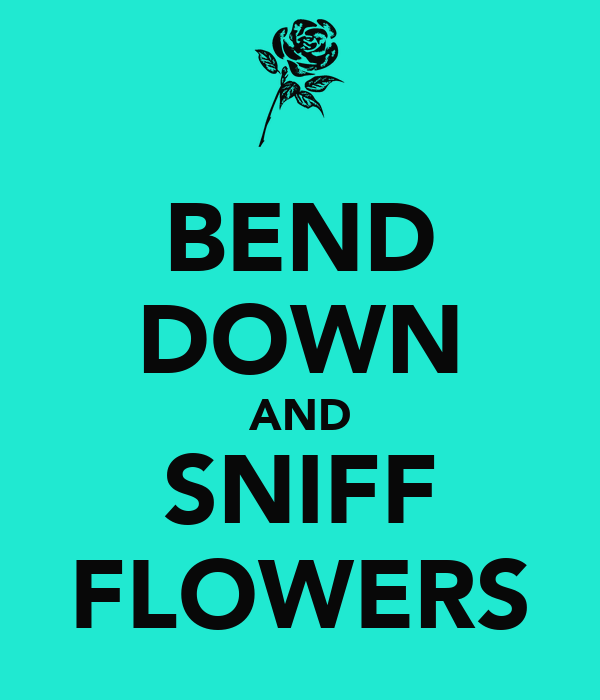 BEND DOWN AND SNIFF FLOWERS