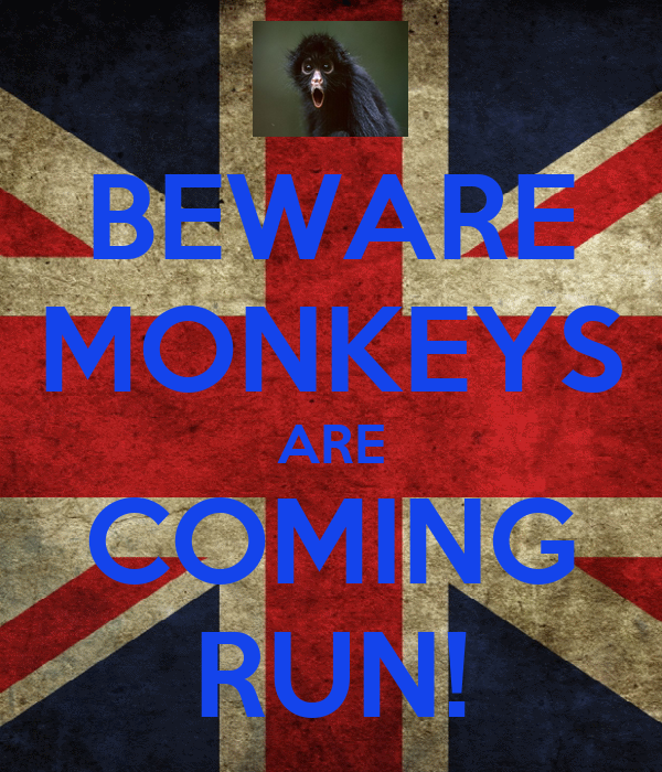 BEWARE MONKEYS ARE COMING RUN!