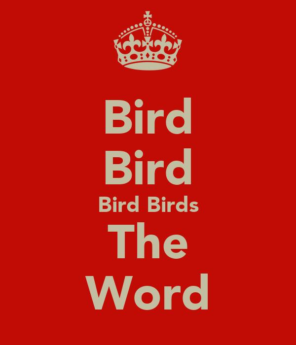 Bird Bird Bird Birds The Word