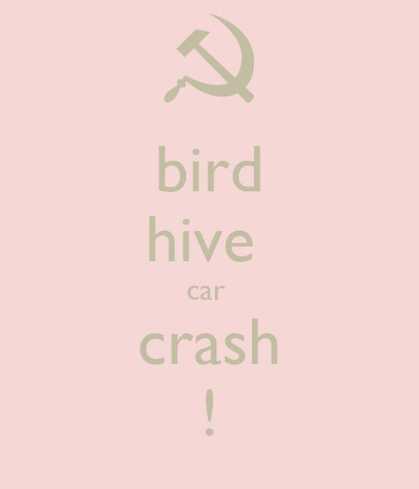 bird hive  car  crash !