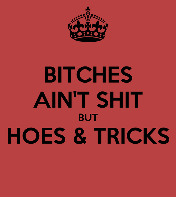 BITCHES AIN'T SHIT BUT HOES & TRICKS