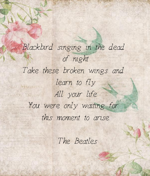 Blackbird singing in the dead  of night Take these broken wings and  learn to fly All your life You were only waiting for  this moment to arise.  - The Beatles