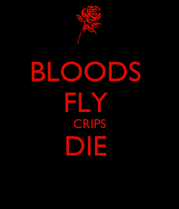 BLOODS  FLY  CRIPS DIE