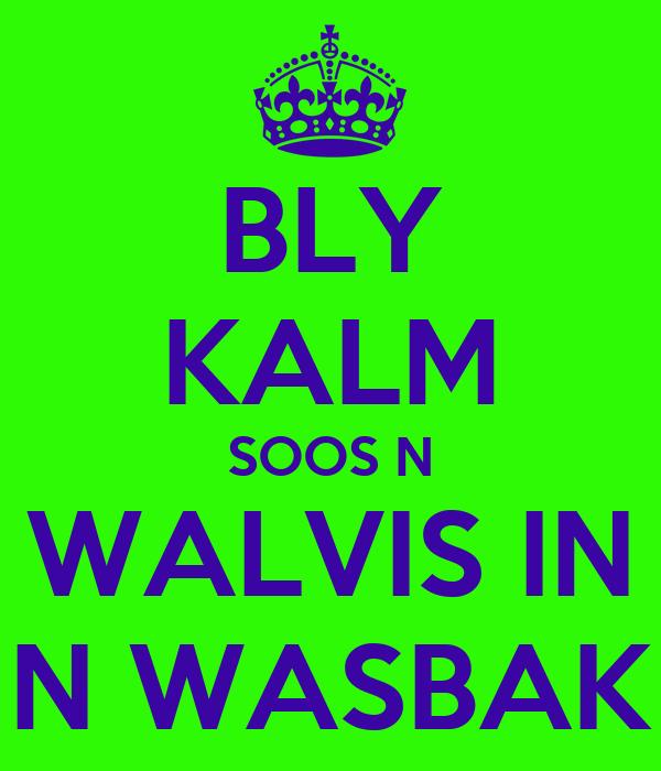 BLY KALM SOOS N WALVIS IN N WASBAK