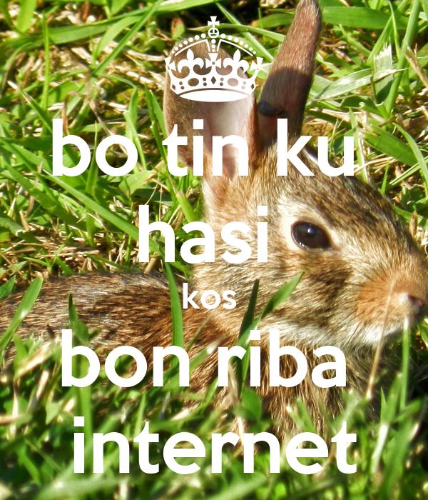 bo tin ku  hasi  kos  bon riba  internet