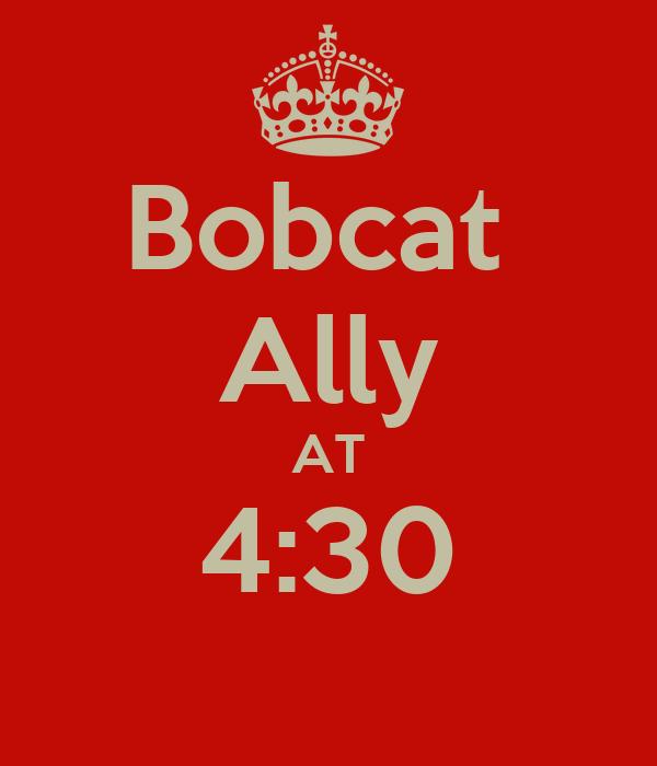 Bobcat  Ally AT 4:30
