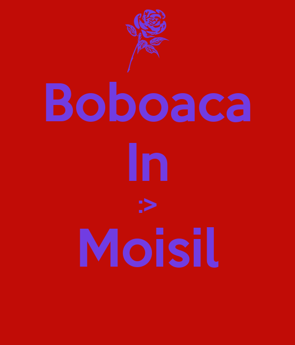 Boboaca In :> Moisil