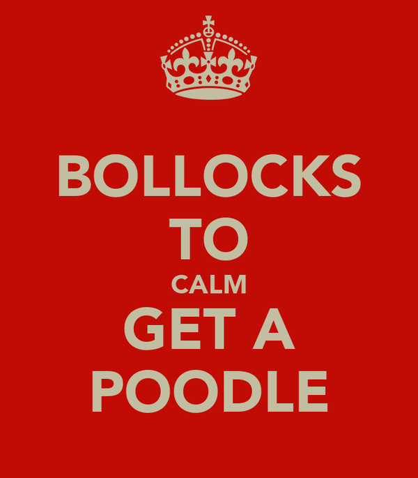 BOLLOCKS TO CALM GET A POODLE