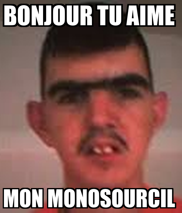 BONJOUR TU AIME  MON MONOSOURCIL