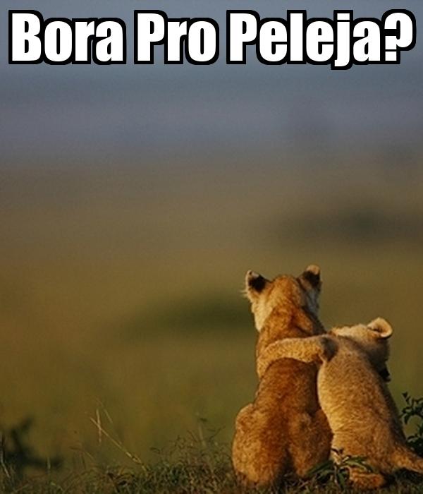 Bora Pro Peleja?
