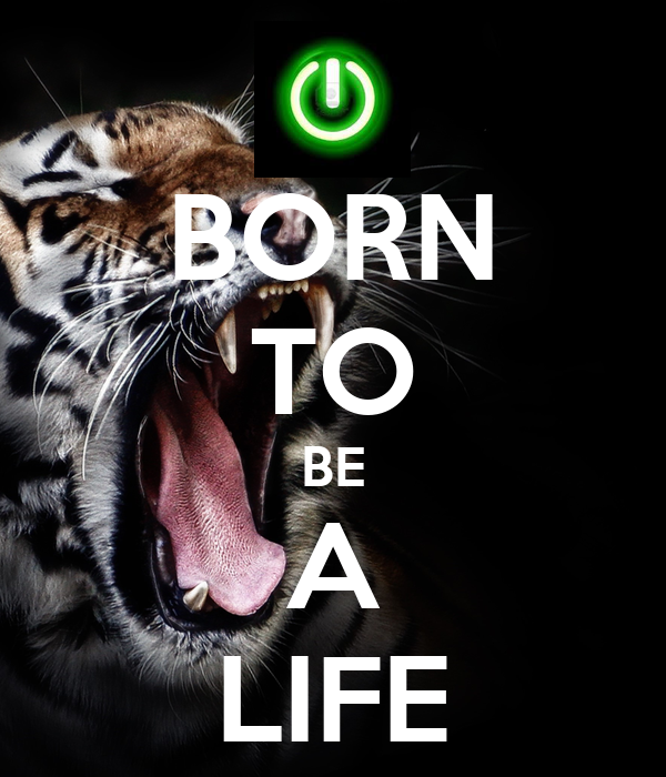 BORN TO BE A LIFE