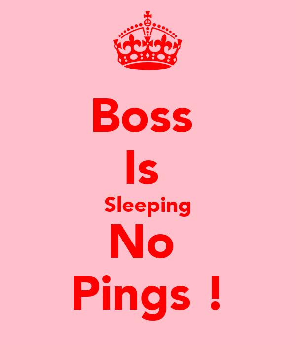 Boss  Is  Sleeping No  Pings !