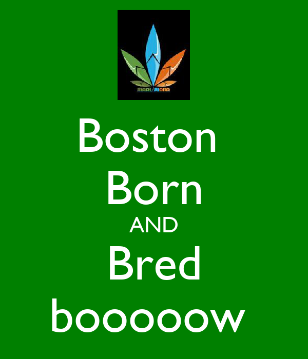 Boston  Born AND Bred booooow
