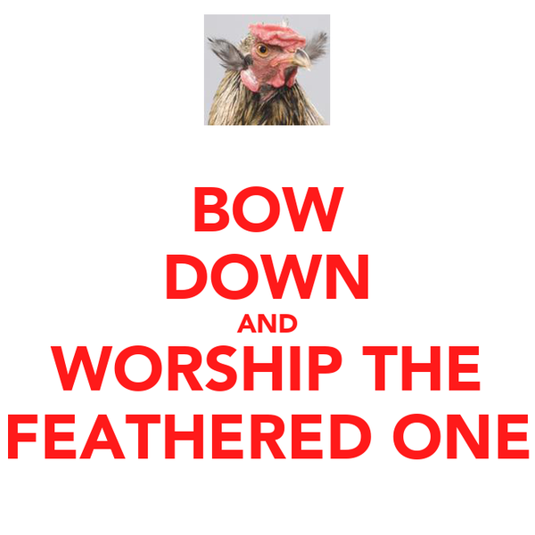 BOW DOWN AND WORSHIP THE FEATHERED ONE