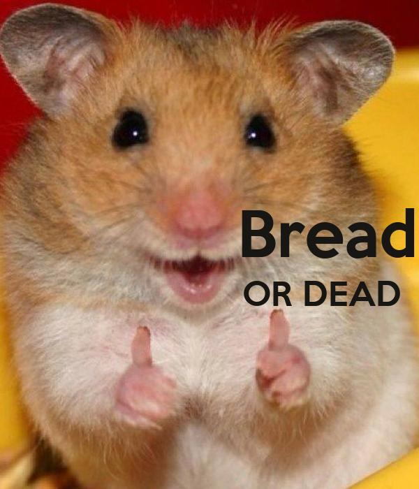 Bread                         OR DEAD
