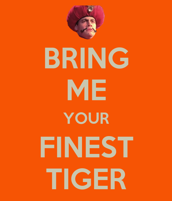 BRING ME YOUR FINEST TIGER