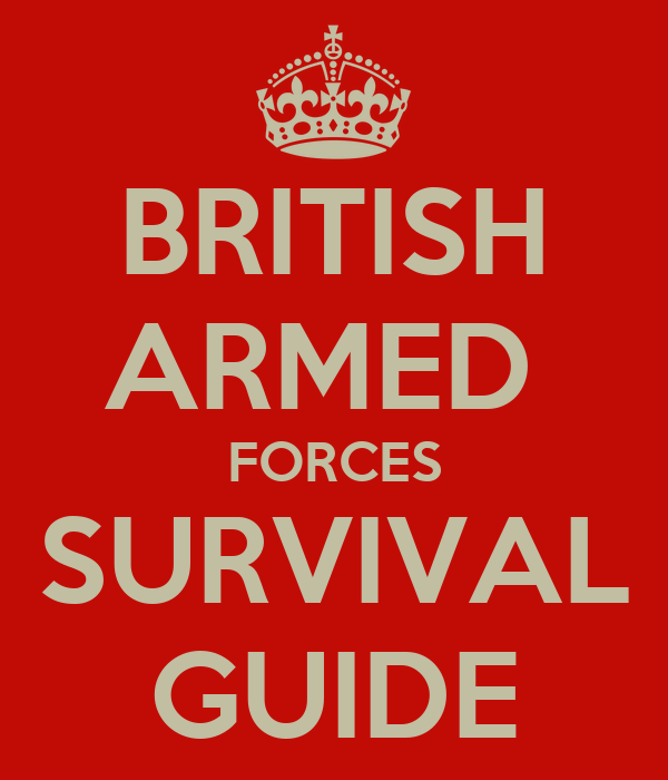 BRITISH ARMED  FORCES SURVIVAL GUIDE