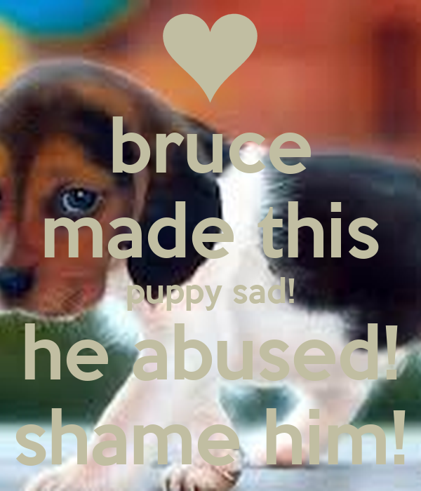 bruce made this puppy sad! he abused! shame him!