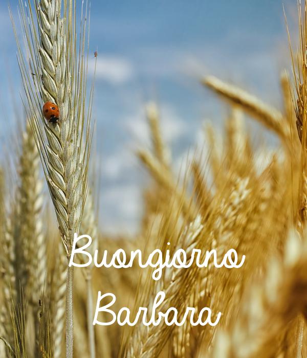 Buongiorno Barbara