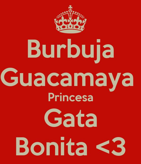 Burbuja Guacamaya  Princesa Gata Bonita <3