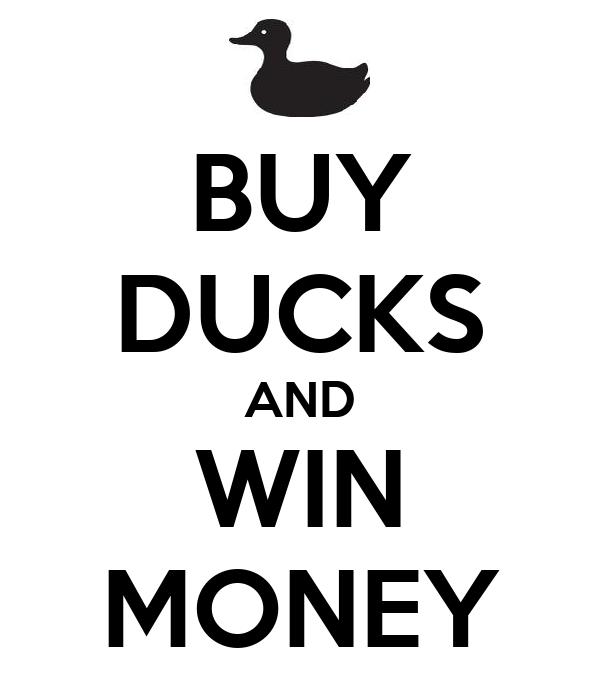 BUY DUCKS AND WIN MONEY