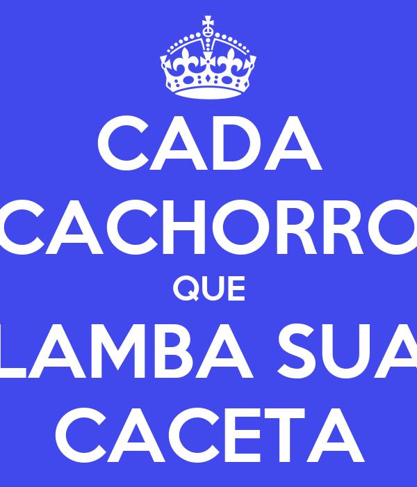 CADA CACHORRO QUE LAMBA SUA CACETA