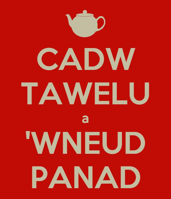 CADW TAWELU a 'WNEUD PANAD