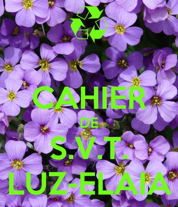 CAHIER DE S.V.T. LUZ-ELAIA