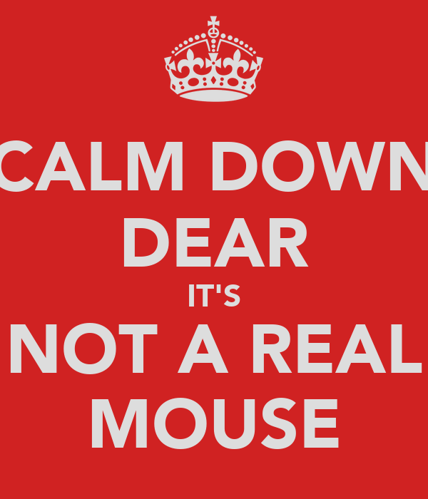 CALM DOWN DEAR IT'S NOT A REAL MOUSE