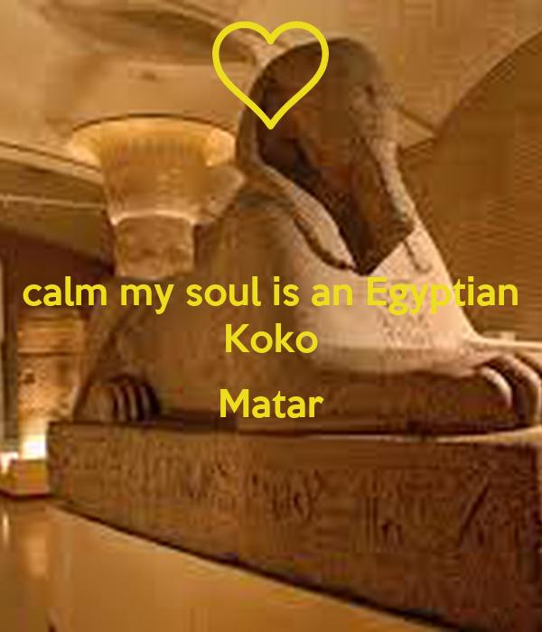 calm my soul is an Egyptian Koko  Matar