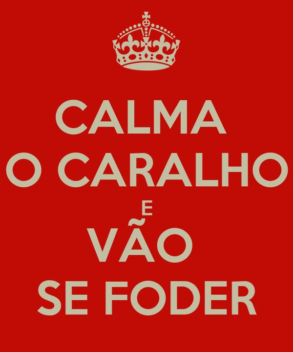 CALMA  O CARALHO E VÃO  SE FODER