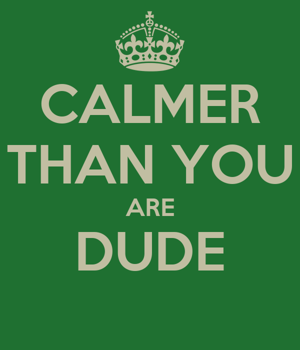 CALMER THAN YOU ARE DUDE
