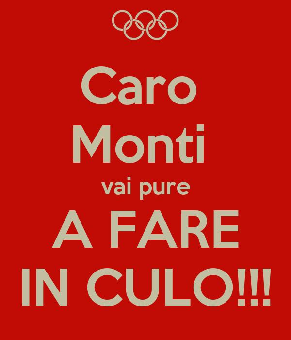 Caro  Monti  vai pure A FARE IN CULO!!!