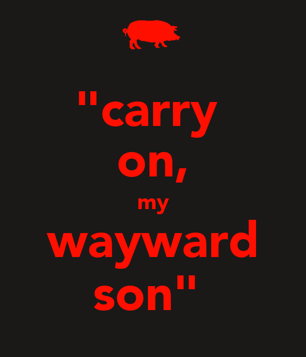 """""""carry  on, my wayward son"""""""